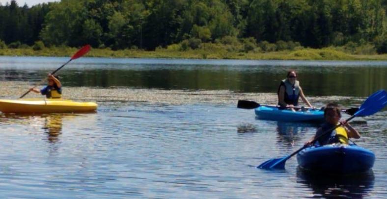 kayaks-e1534354128166.jpg